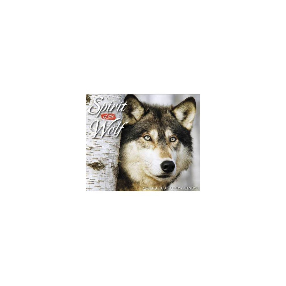 Spirit of the Wolf 2020 Calendar - (Paperback)