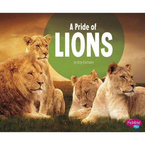 A Pride of Lions - (Animal Groups) by  Amy Kortuem (Paperback) - image 1 of 1
