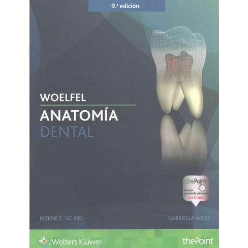 Woelfel Anatomía Dental (Paperback) (Rickne C. Scheid & Gabriela ...