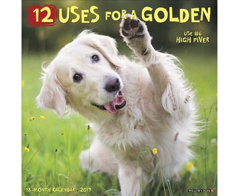 12 Uses for a Golden 2019 Calendar -  (Paperback) - image 1 of 1