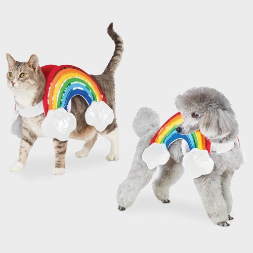 Rainbow with Clouds Halloween Dog and Cat Costume