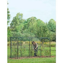 Crop Cage, 4 x 12 Plant Protection Tent - Gardener's Supply Company
