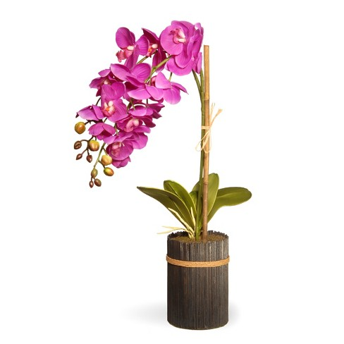 """Artificial Potted Purple Orchid Purple 23"""" - National Tree Company® - image 1 of 1"""