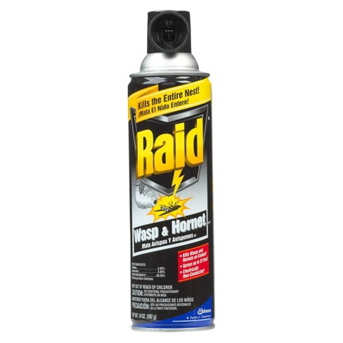Raid® 14oz Wasp & Hornet Insect Spray - image 1 of 1