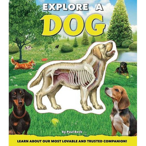 Explore a Dog - by  Paul Beck (Hardcover) - image 1 of 1