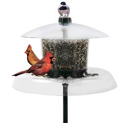 """Droll Yankees Jagunda Squirrel Proof Bird Feeder - Clear - 18.5"""""""