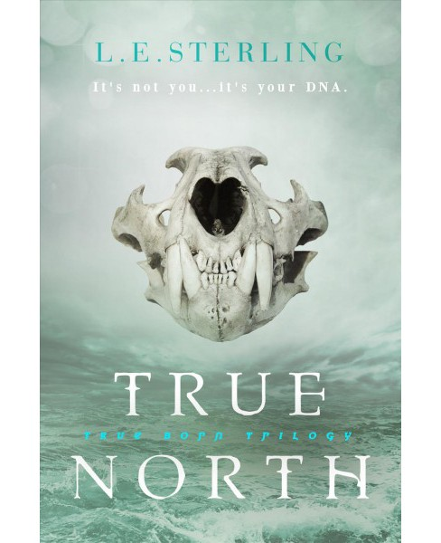 True North (Hardcover) (L. E. Sterling) - image 1 of 1