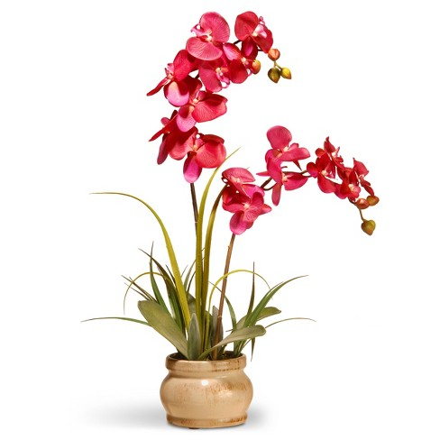 Artificial Orchid In Ceramic Pot Pink 24 National Tree Company