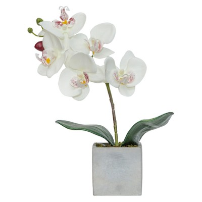 Artificial Orchid Arrangement White 10  - Lloyd & Hannah