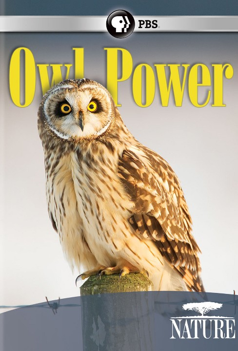 Nature:Owl Power (DVD) - image 1 of 1