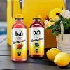 Bai Antioxidant Burundi Blueberry Lemonade - 18 fl oz Bottle - image 4 of 4