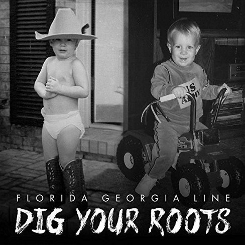 Florida Georgia Line - Dig Your Roots (Vinyl) - image 1 of 1