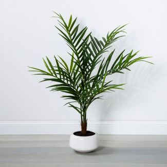 "45"" x 30"" Artificial Palm In Pot Green/White - Opalhouse™"