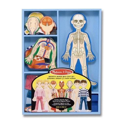 Melissa & Doug Magnetic Human Body Anatomy Play Set and Storage Tray - 24pc - image 1 of 3