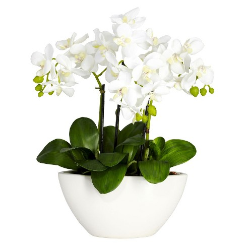 Nearly Natural Phalaenopsis Silk Flower Arrangement - image 1 of 1