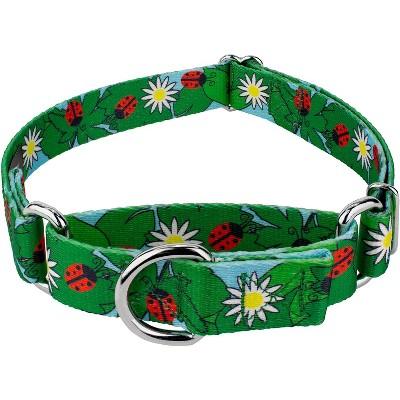 Country Brook Petz® Ladybug Picnic Martingale Dog Collar