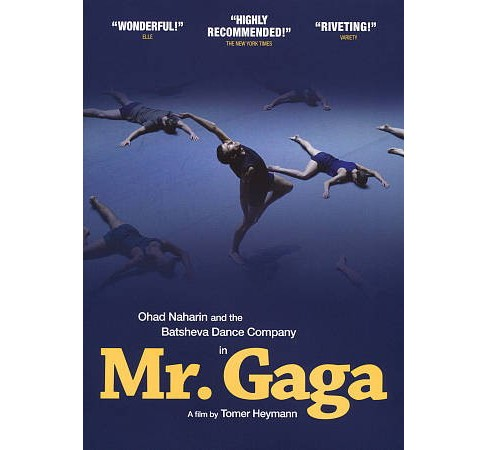 Mr. Gaga:True Story Of Love And Dance (DVD) - image 1 of 1