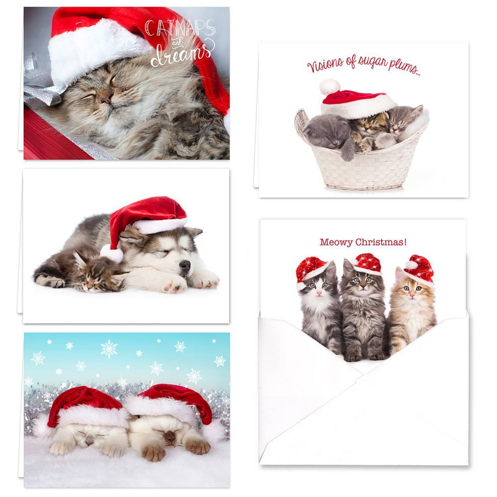 Image of 25ct Christmas Cats Greeting Cards - Masterpiece Studio