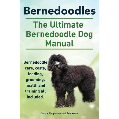 Bernedoodles. The Ultimate Bernedoodle Dog Manual. Bernedoodle care, costs, feeding, grooming, health and training all included. - (Paperback) - image 1 of 1