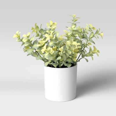 "9"" x 6"" Artificial Boxwood Arrangement - Threshold™"