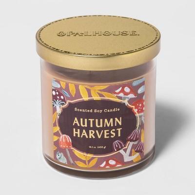 15.1oz Lidded Glass Jar 2-Wick Autumn Harvest Candle - Opalhouse™