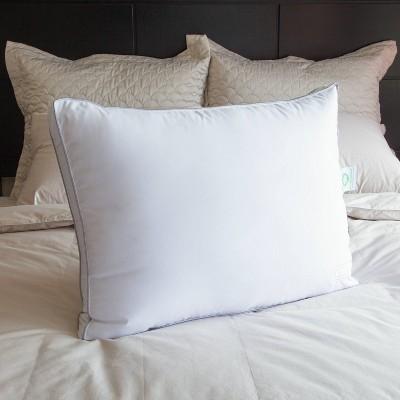 Anti-Allergen Bed Pillow - Nikki Chu