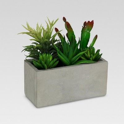Artificial Succulents in Rectangular Cement (9 )- Threshold™