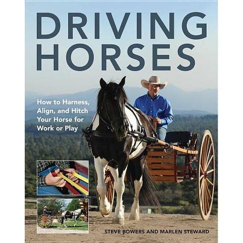 Driving Horses - by  Steve Bowers & Marlen Steward (Paperback) - image 1 of 1