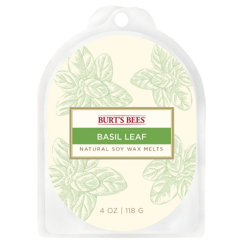 Warmer Melts Basil Leaf 4oz - Burt's Bees® - image 1 of 2