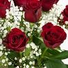 Colour Republic Red Rose + Gypsophila Bouquet - image 3 of 4
