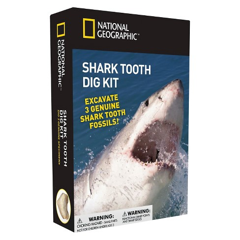 National Geographic™ Shark Tooth Dig Kit