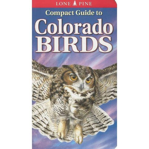 Compact Guide to Colorado Birds - by  Michael Roedel & Krista Kagume & Gregory Kennedy (Paperback) - image 1 of 1