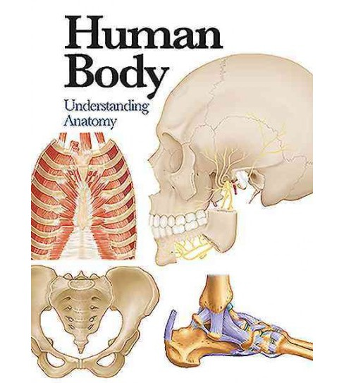 Human Body : Understanding Anatomy (Revised) (Paperback) - image 1 of 1