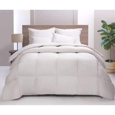 King Lightweight Feather & Down Comforter - Allied Home