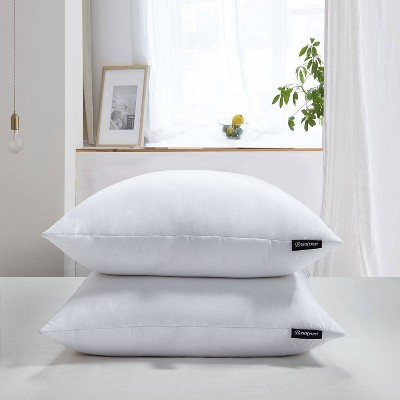 Euro 2pk Feather Down Bed Pillow - Beautyrest