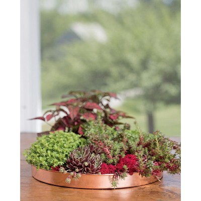 Large Round Copper Plant Tray, 14 - GARDENER'S SUPPLY CO.
