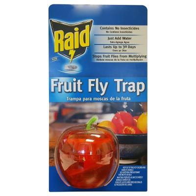 Raid Fruit Fly Trap - 1ct