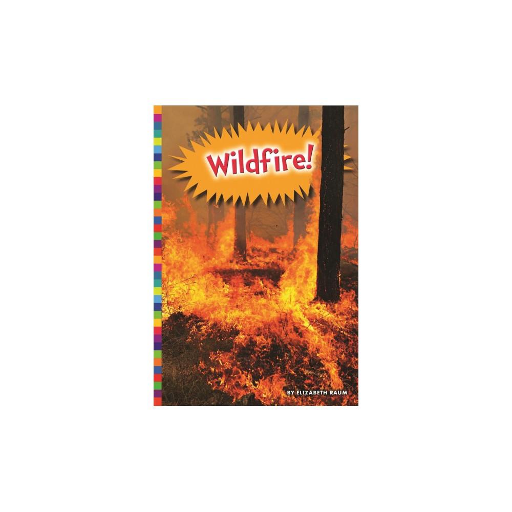Wildfire! (Reprint) (Paperback) (Elizabeth Raum)