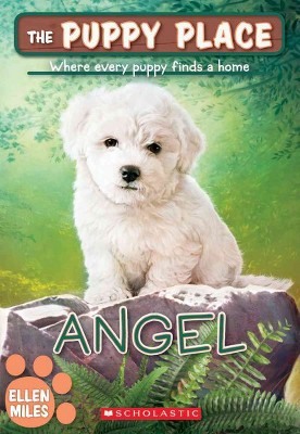 Angel (the Puppy Place #46), 46 - by  Ellen Miles (Paperback)