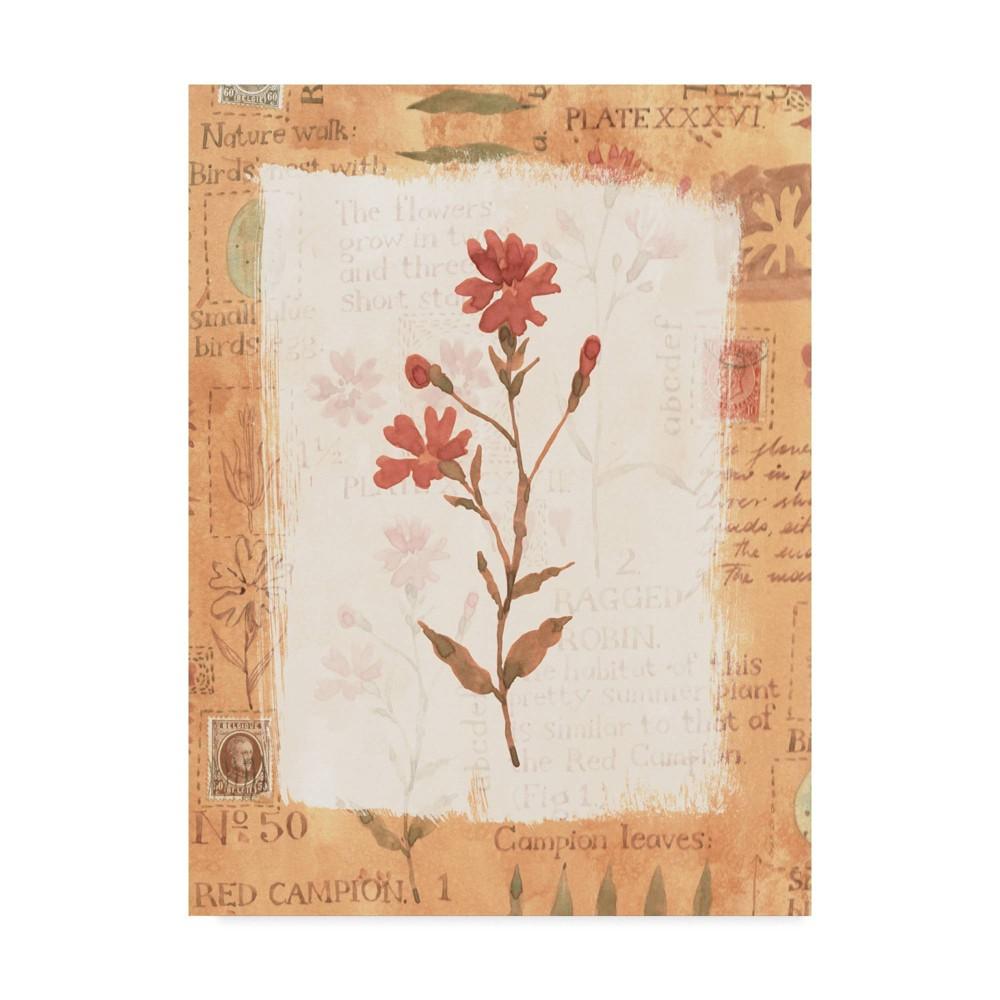 14 34 X 19 34 Red Flower Rustic By Hope Street Designs Trademark Fine Art