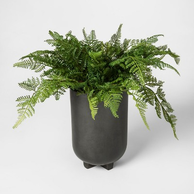 Faux Fern Plant in Black Pot - Project 62™