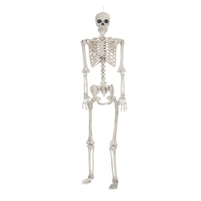 Lifesize Posable Halloween Skeleton - Hyde and Eek! Boutique™