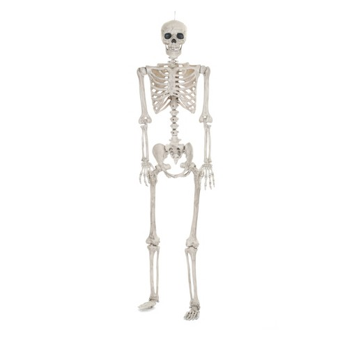 Lifesize Posable Halloween Skeleton - Hyde and Eek! Boutique™ : Target