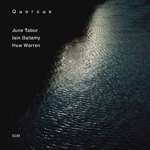 Huw Warren - Quercus (CD) - image 1 of 1