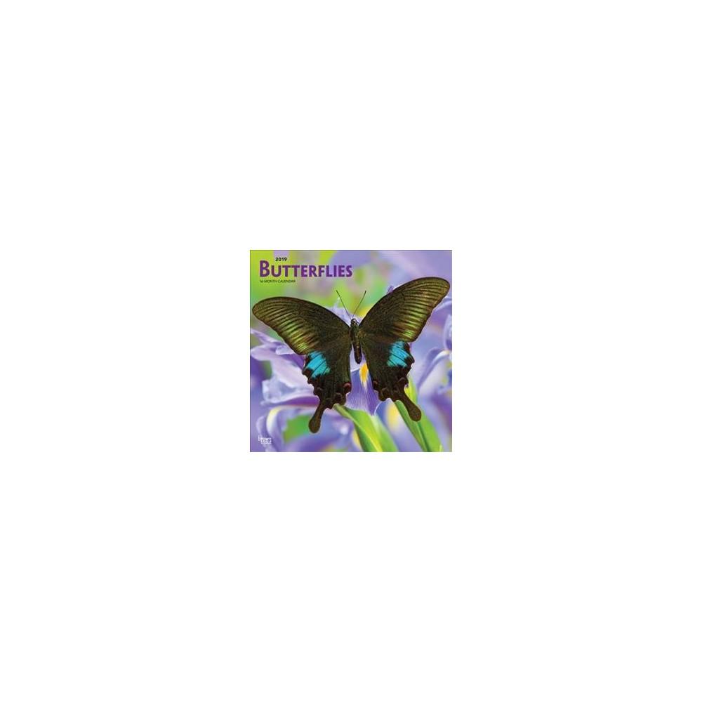Butterflies 2019 Calendar - (Paperback)