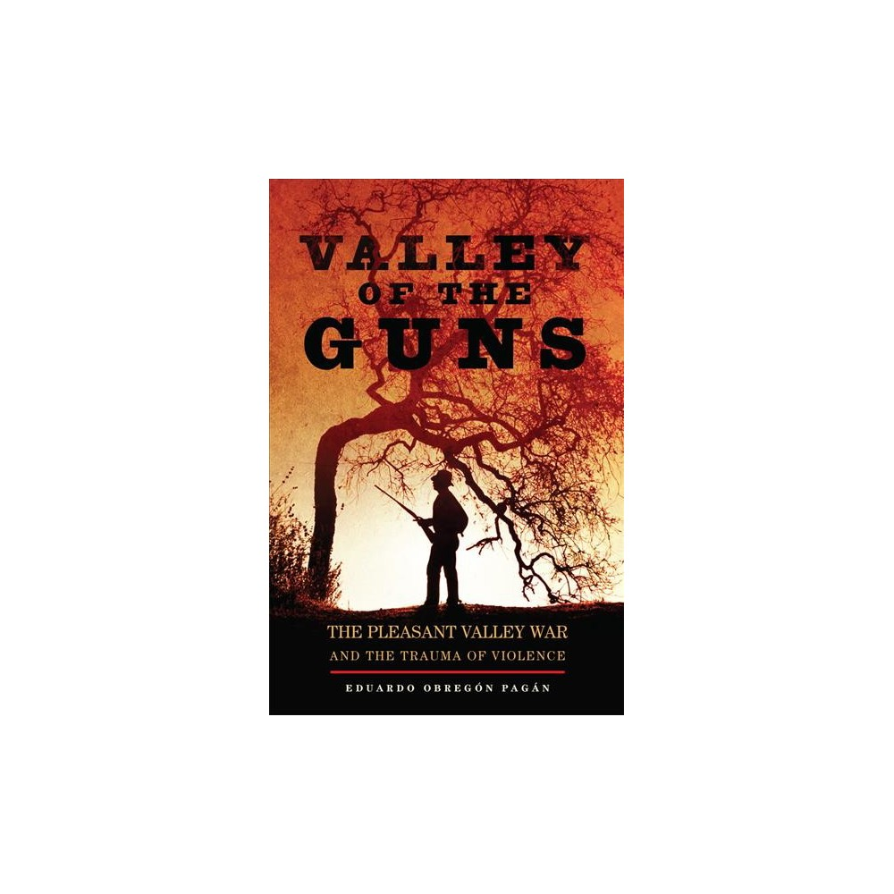 Valley of the Guns : The Pleasant Valley War and the Trauma of Violence - (Hardcover)