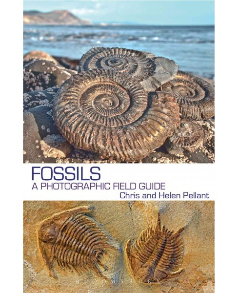 Fossils : A Photographic Field Guide (Paperback) (Chris Pellant & Helen Pellant) - image 1 of 1
