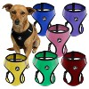 Oxgord Paws & Pals Dog Harness - image 3 of 3