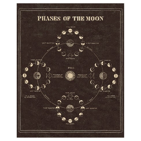 Astronomy 101 Phases of the Moon Unframed Wall Canvas Art - (24X30) - image 1 of 1
