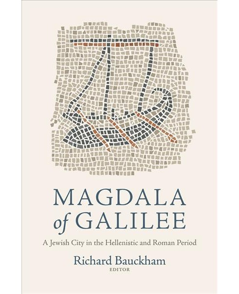 Magdala of Galilee : A Jewish City in the Hellenistic and Roman Period -  (Hardcover) - image 1 of 1